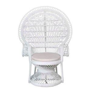 Peacock Chair 01