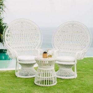 Peacock Chair 02